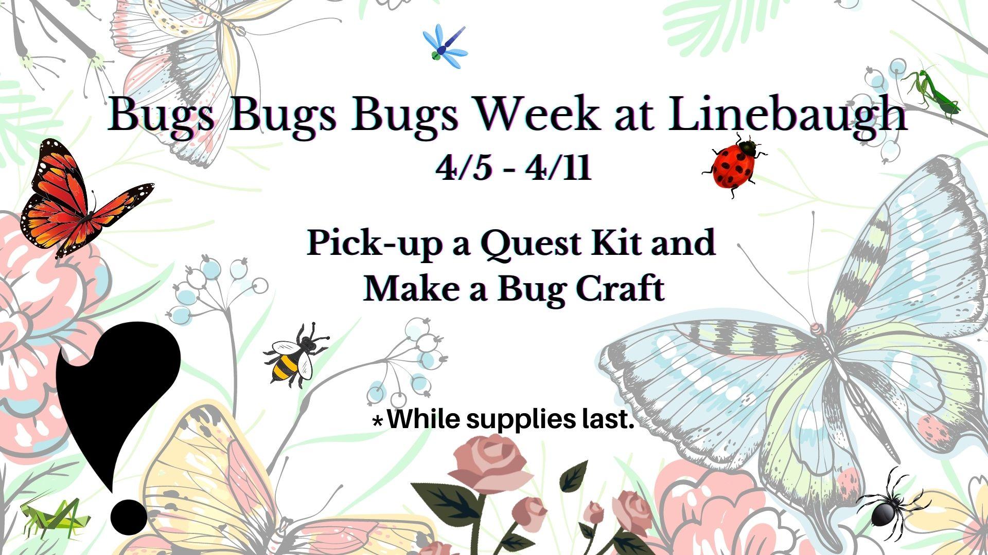 Bugs Bugs Bugs Week at Linebaugh