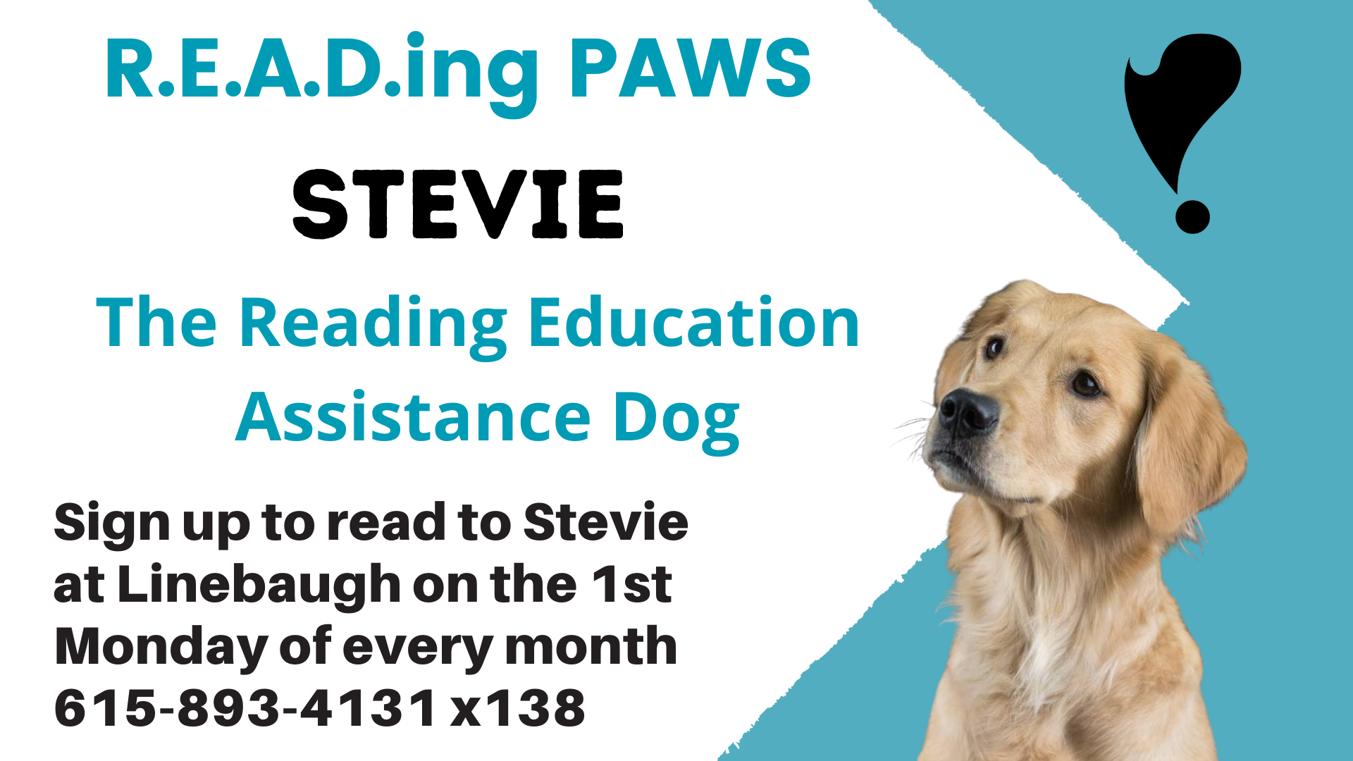 Reading with Stevie