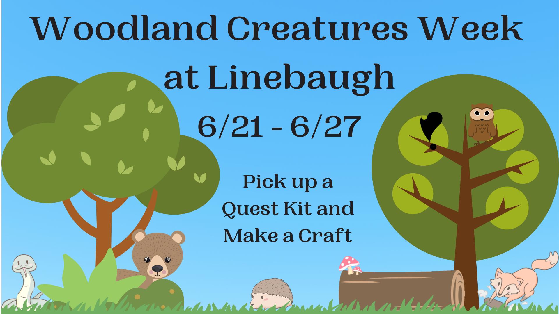 Woodland Creatures Week at Linebaugh